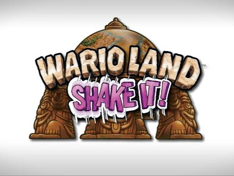 Propaganda Wario Land - Shake It!